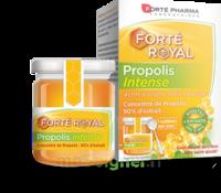 Forte Pharma Propolis Intense Gelée Pot/40g à BOUC-BEL-AIR