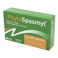 Phytospasmyl Caps B/60 à BOUC-BEL-AIR