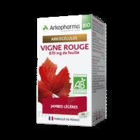 Arkogélules Vigne Rouge Bio Gélules Fl/45 à BOUC-BEL-AIR