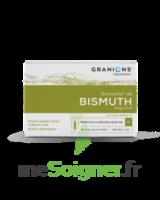 Granions De Bismuth 2 Mg/2 Ml S Buv 10amp/2ml à BOUC-BEL-AIR