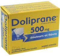 DOLIPRANE 500 mg Poudre pour solution buvable en sachet-dose B/12 à BOUC-BEL-AIR