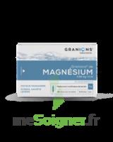 Granions De Magnesium 3,82 Mg/2 Ml S Buv 30amp/2ml à BOUC-BEL-AIR