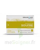 Granions De Soufre 19,5 Mg/2 Ml S Buv 30amp/2ml à BOUC-BEL-AIR
