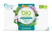 Nutrisanté Infusions Bio Tisane Confort De La Gorge 20 Sachets à BOUC-BEL-AIR