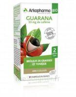 Arkogélules Guarana Bio Gélules Fl/45 à BOUC-BEL-AIR