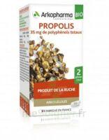 Arkogélules Propolis Bio Gélules Fl/45 à BOUC-BEL-AIR