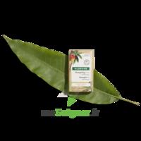 Klorane Capillaire Shampooing Solide Nutrition Mangue B/80g à BOUC-BEL-AIR