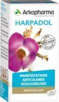 ARKOGELULES HARPAGOPHYTON Gélules Fl/150 à BOUC-BEL-AIR