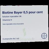 BIOTINE BAYER 0,5 POUR CENT, solution injectable I.M. à BOUC-BEL-AIR