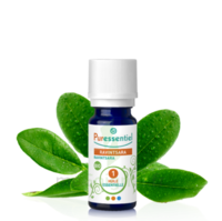 Puressentiel Huiles essentielles - HEBBD Ravintsara BIO* - 5 ml à BOUC-BEL-AIR