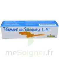 CALENDULA LHF POM T/20G à BOUC-BEL-AIR