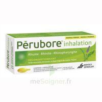Perubore Caps Inhalation Par Vapeur Inhalation Plq/15 à BOUC-BEL-AIR