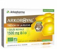 Arkoroyal Gelée royale bio 1500 mg Solution buvable 20 Ampoules/10ml à BOUC-BEL-AIR