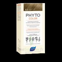 Phytocolor Kit Coloration Permanente 8.3 Blond Clair Doré à BOUC-BEL-AIR