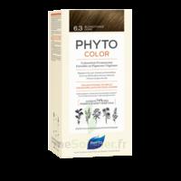 Phytocolor Kit Coloration Permanente 6.3 Blond Foncé Doré à BOUC-BEL-AIR