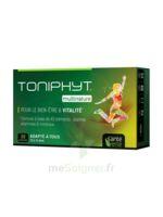 Santé Verte Toniphyt Multinature 30 Comprimés à BOUC-BEL-AIR