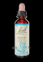Fleurs De Bach® Original Beech - 20 Ml à BOUC-BEL-AIR