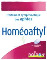 Boiron Homéoaftyl Comprimés à BOUC-BEL-AIR