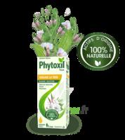 Phytoxil Toux Sans Sucre Sirop Adulte Enfant +2 Ans Fl/120ml à BOUC-BEL-AIR