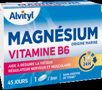 Govital Magnésium Vitamine B6 Comprimés B/45 à BOUC-BEL-AIR