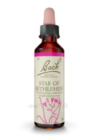 Fleurs De Bach® Original Star Of Bethlehem - 20 Ml à BOUC-BEL-AIR