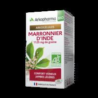 Arkogélules Marronnier D'inde Bio Gélules Fl/45 à BOUC-BEL-AIR