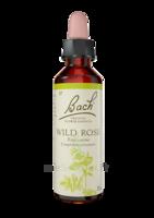 Fleurs de Bach® Original Wild Rose - 20 ml à BOUC-BEL-AIR