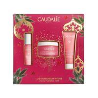 Caudalie Coffret Vinosource-hydra Crème Sos Noël 2021 à BOUC-BEL-AIR