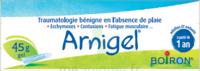 Boiron Arnigel Gel T/45g à BOUC-BEL-AIR